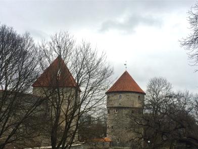tallinn town wall